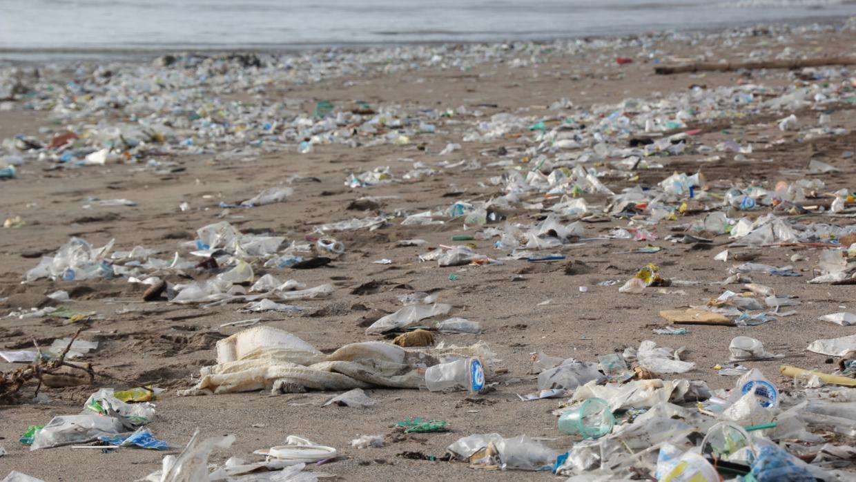 12 países del Caribe prohibieron el plástico de un solo uso. ¿Cuándo lo haremos aquí?